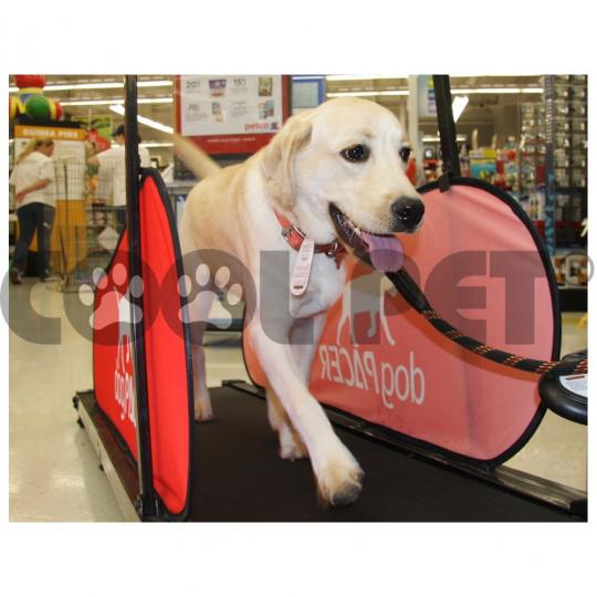 Laufband, treadmill , Laufbänder für große Hunde DOG PACER LF 3.1